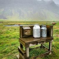 Islanda: amore tra i bidoni del latte